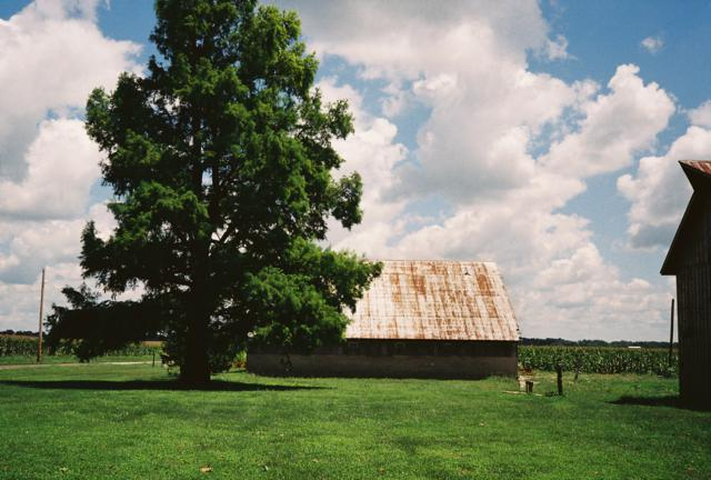 Olympus 35 RC, Barn, Tree, and Clouds