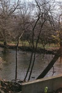 Olympus OM-1n, ASA 400, River, Gossen Digisix