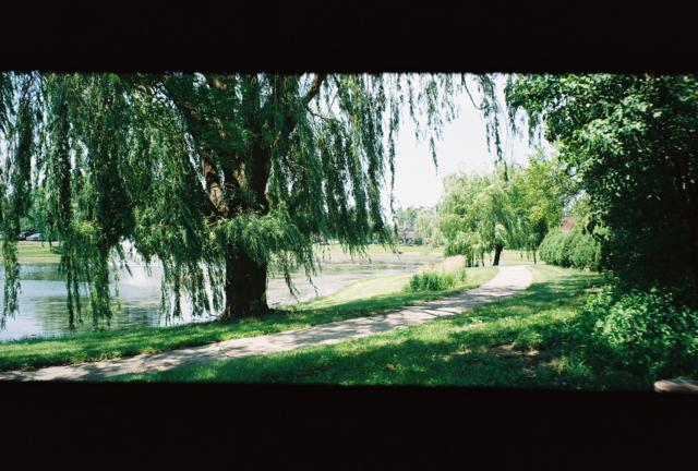 Rollei Prego 90, A Walk by the Pond