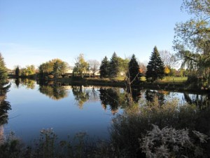Canon SD880, Pond in Mount Prospect