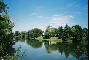 Yashica T4, Pond in Mount Prospect